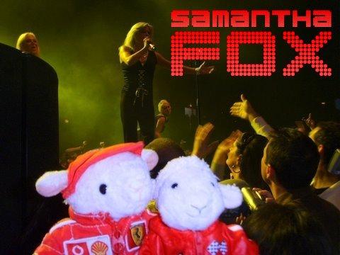 samfox-093