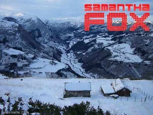samfox-158